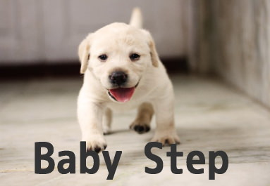 babystep[1]