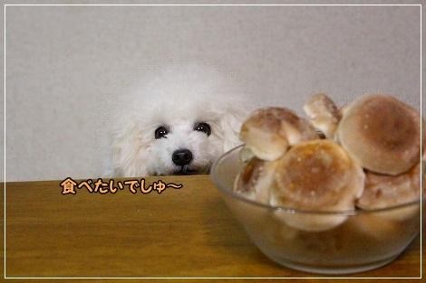 だよね(^^ゞワンご飯に使いましょ!