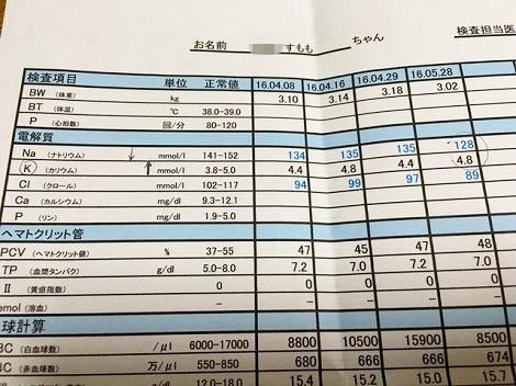 2016.5.28検査結果☆