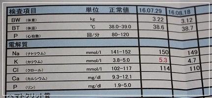 8月18日検査結果②