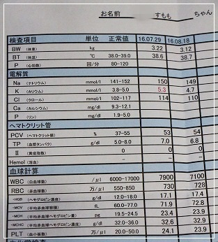 8月18日検査結果①