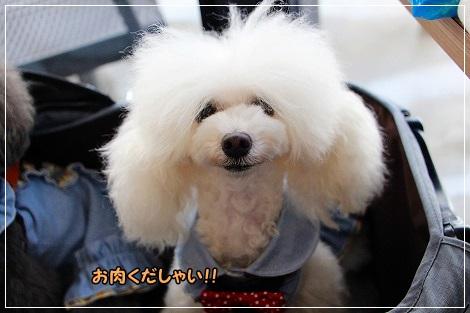 やらねーよ!!!!てか、その髪は?!