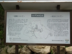 竹田城跡について