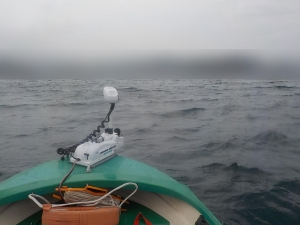 DSCN1896 7時を過ぎたら急に風が強く