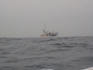DSCN2029 遊漁船がこっちきた