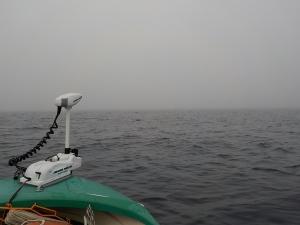 DSCN2109 6時半濃霧はれず