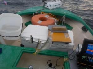DSCN2184 アジが釣れます