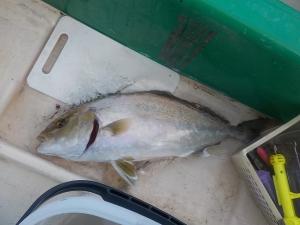 DSCN2277 ボートに水が溜まってスリリング
