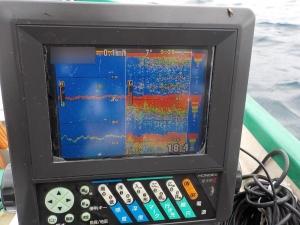 DSCN2444 9時30分すぎにわかにアジが釣れ始める