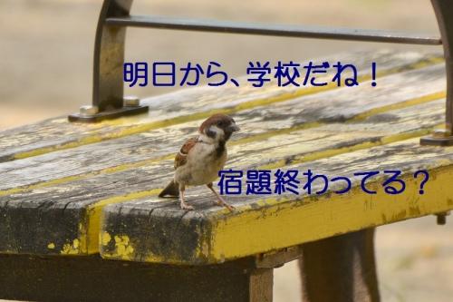 001_20160831200812839.jpg