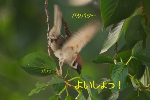 010_20160827201200533.jpg