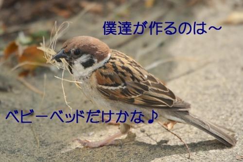 020_2016081619212260f.jpg