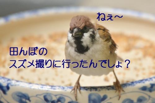 020_201610101305361f9.jpg