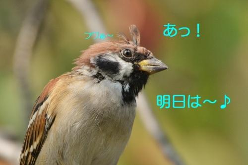 020_20161012200831eb9.jpg