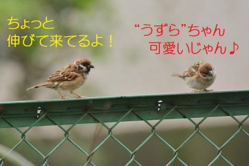 025_20160929193631b3b.jpg