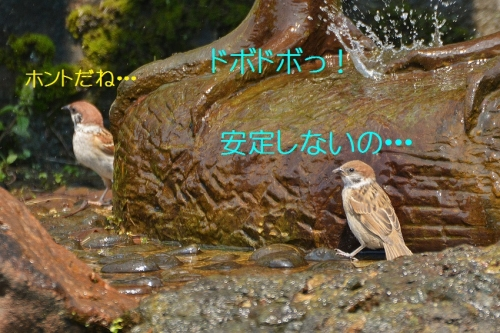 030_201606112057324c0.jpg
