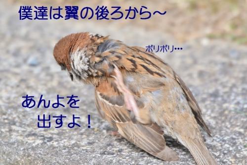 030_201607201940352fd.jpg