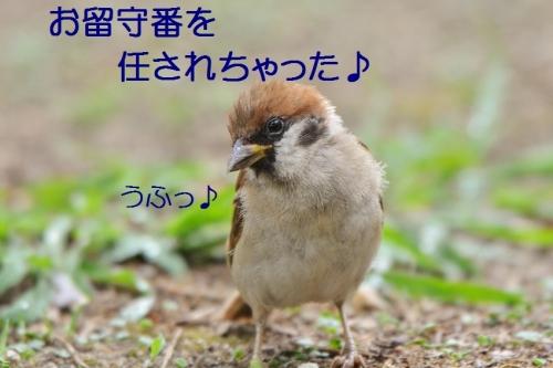 030_20160903212840ad6.jpg