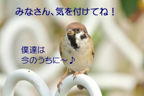 030_20161004182749dd9.jpg