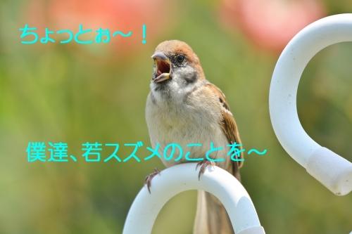 040_2016071720074214f.jpg