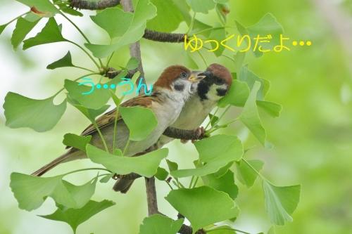 040_20160803214241636.jpg