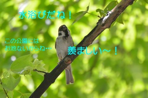 045_20160826181943ae8.jpg