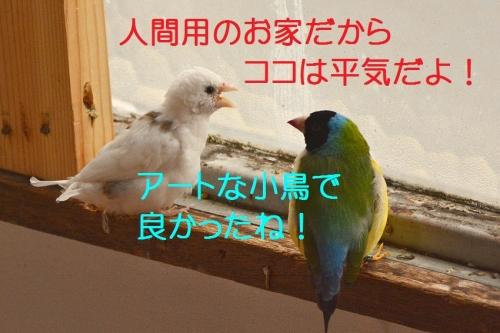 050_20160920182733d85.jpg