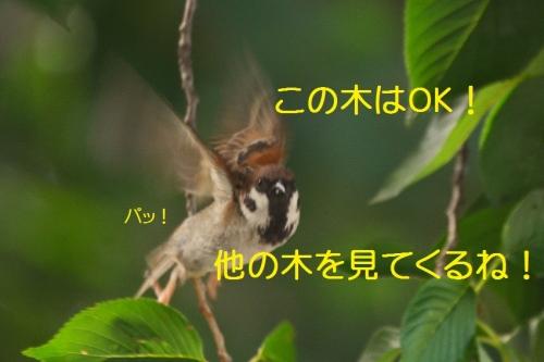 060_20160827201249cc5.jpg