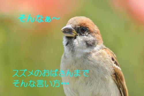 070_20160717200943829.jpg