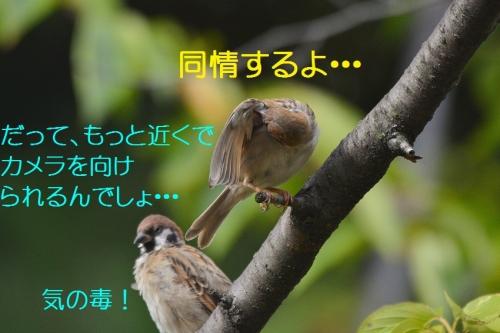 070_201609172104350f1.jpg