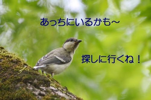 080_201607032253137a9.jpg