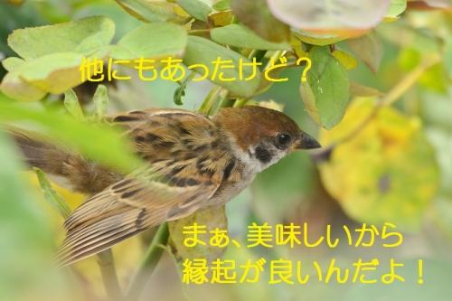 090_20160713213025ed2.jpg