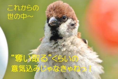 090_20160717200947591.jpg