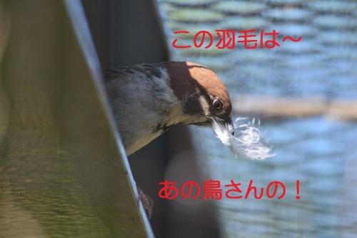 100_20160623183248634.jpg