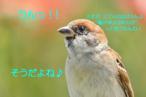 100_20160717200947b4e.jpg