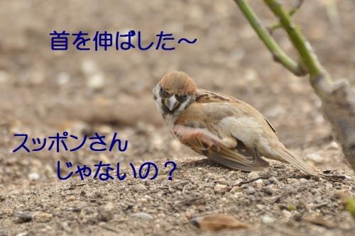100_20160726192410a9b.jpg