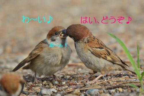 100_20160818191858e9d.jpg