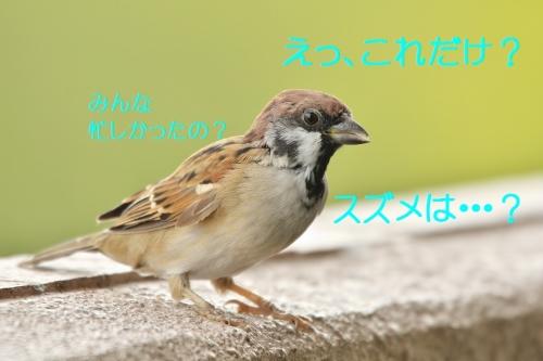 100_20160926180832fca.jpg