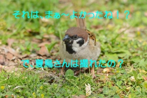 120_2016042619183138d.jpg