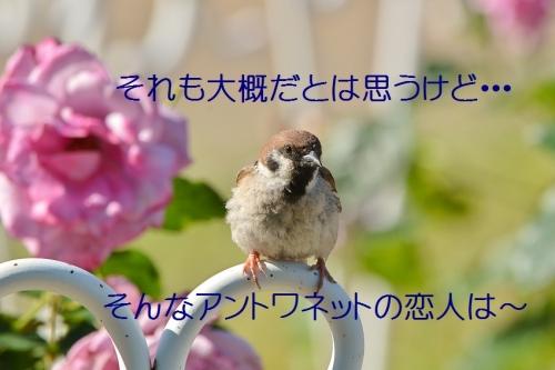 120_2016060221461974f.jpg