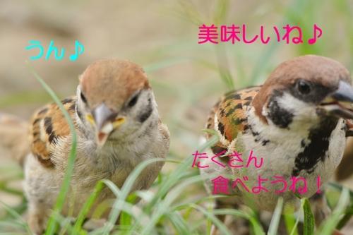 120_20160811200613aed.jpg