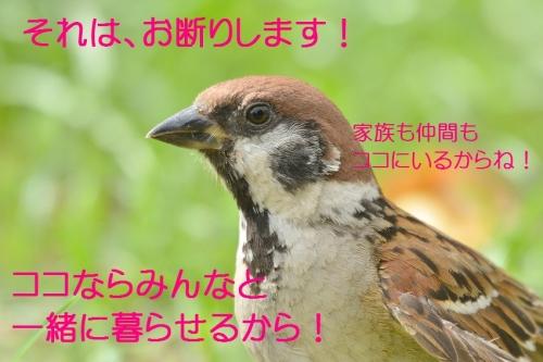 130_20160811200614025.jpg