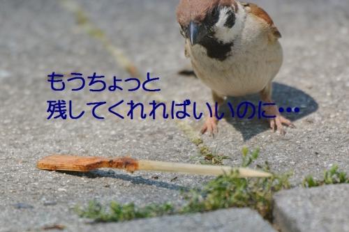 140_20160701194241ce0.jpg