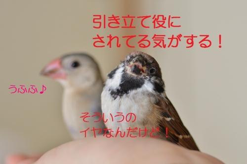 150_20160711200016ee5.jpg