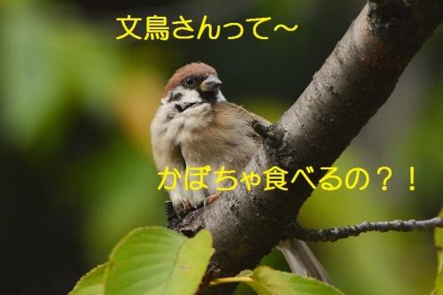 150_2016091220133427e.jpg