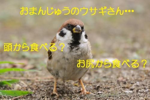 150_20160914034318a47.jpg