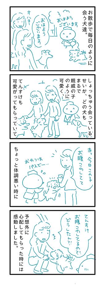 siseki.png