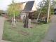 家の入口の芝生