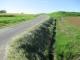 草を刈った道路