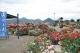 バラ公園全景